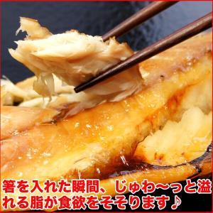 (干物 セット) 定番 焼き魚 3種セット 送料無料 アジ開き干・天塩干さば・甘塩銀鮭切り身 (海鮮 限定 ギフト)|nakagawa-k-ichiba|05