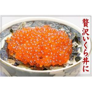 いくら 北海道産 いくら醤油漬け イクラ 500g 送料無料(海鮮 丼 ギフト) グルメ お中元 matatu|nakagawa-k-ichiba|07