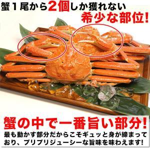 カニ ズワイガニ 爪肉 (かに カニ 蟹 がに ガニ)1kg ボイル カニツメ 送料無料|nakagawa-k-ichiba|03