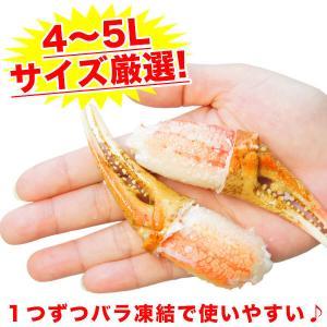 カニ ズワイガニ 爪肉 (かに カニ 蟹 がに ガニ)1kg ボイル カニツメ 送料無料 ギフト グルメ お中元 tume|nakagawa-k-ichiba|04