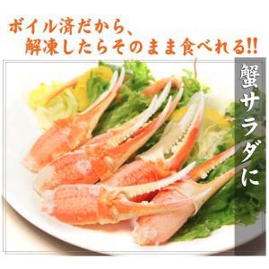 カニ ズワイガニ 爪肉 (かに カニ 蟹 がに ガニ)1kg ボイル カニツメ 送料無料 ギフト グルメ お中元 tume|nakagawa-k-ichiba|06