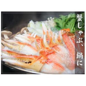 カニ ズワイガニ 爪肉 (かに カニ 蟹 がに ガニ)1kg ボイル カニツメ 送料無料 ギフト グルメ お中元 tume|nakagawa-k-ichiba|07