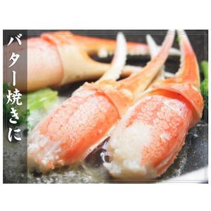 カニ ズワイガニ 爪肉 (かに カニ 蟹 がに ガニ)1kg ボイル カニツメ 送料無料 ギフト グルメ お中元 tume|nakagawa-k-ichiba|08