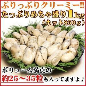 牡蠣 ジャンボサイズ 広島産 生牡蠣1kg(解凍後850g/約25−35粒) 鍋 送料無料(かき 牡蠣 カキ 加熱用)ギフト グルメ お中元 kaki1|nakagawa-k-ichiba|03
