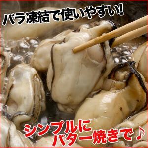 牡蠣 ジャンボサイズ 広島産 生牡蠣1kg(解凍後850g/約25−35粒) 鍋 送料無料(かき 牡蠣 カキ 加熱用)ギフト グルメ お中元 kaki1|nakagawa-k-ichiba|05