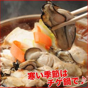 牡蠣 ジャンボサイズ 広島産 生牡蠣1kg(解凍後850g/約25−35粒) 鍋 送料無料(かき 牡蠣 カキ 加熱用)ギフト グルメ お中元 kaki1|nakagawa-k-ichiba|08