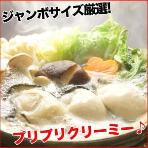 牡蠣 ジャンボサイズ 広島産 生牡蠣1kg(解凍後850g/約25−35粒) 鍋 送料無料(かき 牡蠣 カキ 加熱用)ギフト グルメ お中元 kaki1|nakagawa-k-ichiba|09
