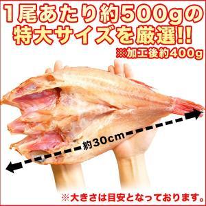 クーポン利用で2000円OFF! キンキ 開き 一夜干し 2尾 魚 特大 約400g【送料無料】干物 焼き魚 きんき キチジ 吉次 喜知次 お歳暮|nakagawa-k-ichiba|06