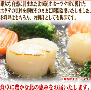 ホタテ ほたて 帆立 貝柱1kg 北海道産 程よく大きなサイズ お刺身OK 訳あり わけあり 業務用 食品 BBQ バーベキュー ギフト|nakagawa-k-ichiba|02