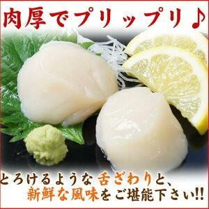 ホタテ ほたて 帆立 貝柱1kg 北海道産 程よく大きなサイズ お刺身OK 訳あり わけあり 業務用 食品 BBQ バーベキュー ギフト|nakagawa-k-ichiba|05