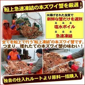 ボイルズワイガニ 蟹脚 5kg ずわい蟹 訳あり ギフト かに カニ 「ズワイガニ5kg」 グルメ zuwai5|nakagawa-k-ichiba|02