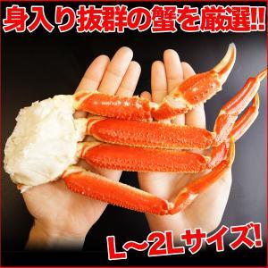 ボイルズワイガニ 蟹脚 5kg ずわい蟹 訳あり ギフト かに カニ 「ズワイガニ5kg」 グルメ zuwai5|nakagawa-k-ichiba|04