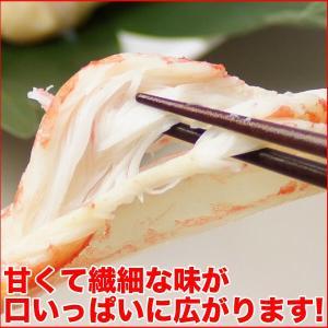 ボイルズワイガニ 蟹脚 5kg ずわい蟹 訳あり ギフト かに カニ 「ズワイガニ5kg」 グルメ zuwai5|nakagawa-k-ichiba|05