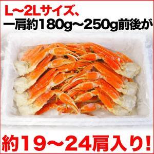 ボイルズワイガニ 蟹脚 5kg ずわい蟹 訳あり ギフト かに カニ 「ズワイガニ5kg」 グルメ zuwai5|nakagawa-k-ichiba|06