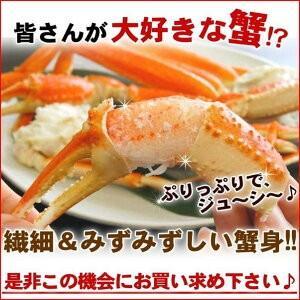 ボイルズワイガニ 蟹脚 5kg ずわい蟹 訳あり ギフト かに カニ 「ズワイガニ5kg」 グルメ zuwai5|nakagawa-k-ichiba|07