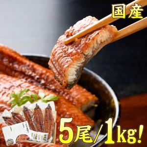 うなぎ 蒲焼き 国産 5尾/約1kg 送料無料(食品 鰻 ウ...