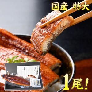 うなぎ 蒲焼き 210g/1尾 きざみうなぎ2袋 ギフトセッ...