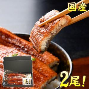 うなぎ 蒲焼き 国産 190〜200g×2尾 ギフトセット ...