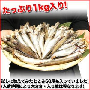 子持ちししゃも 1kg 訳あり グルメ|nakagawa-k-ichiba|03