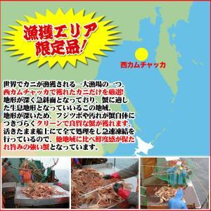カット済 (かに カニ) 生ずわい蟹 3kg ズワイガニ|nakagawa-k-ichiba|02