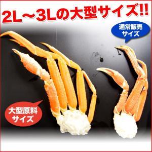 ボイルズワイガニ 蟹脚 3kg ずわい蟹 ギフト かに カニ 「ズワイガニ3kg」 グルメ(カニ 海鮮) zuwai3 nakagawa-k-ichiba 04