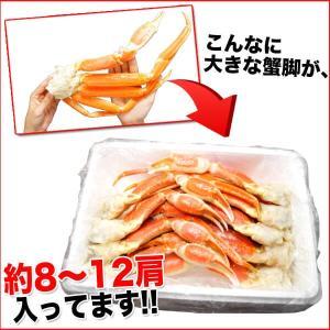 ボイルズワイガニ 蟹脚 3kg ずわい蟹 ギフト かに カニ 「ズワイガニ3kg」 グルメ(カニ 海鮮) zuwai3 nakagawa-k-ichiba 05