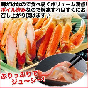ボイルズワイガニ 蟹脚 3kg ずわい蟹 ギフト かに カニ 「ズワイガニ3kg」 グルメ(カニ 海鮮) zuwai3 nakagawa-k-ichiba 06