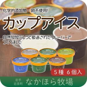 中洞牧場カップアイス6個セット [冷凍]  アイスクリーム ...