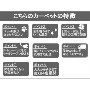 カーペット 4.5畳 ラグ 春夏用 正方形 カーペット 日本製 抗菌 フリーカット 快適生活|nakane|02