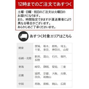 カーペット 4.5畳 ラグ 春夏用 正方形 カーペット 日本製 抗菌 フリーカット 快適生活|nakane|03