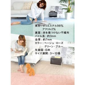 カーペット 4.5畳 ラグ 春夏用 正方形 カーペット 日本製 抗菌 フリーカット 快適生活|nakane|06