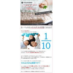 ウール カーペット 4.5畳 ラグマット 天然素材ウールカーペット 羊毛100% 防炎 おしゃれ|nakane|05
