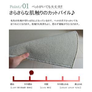 カーペット 6畳 カーペット ラグ ホットカーペット対応 おしゃれ 防臭 シンプル 無地 ペットOK フレヤ|nakane|03