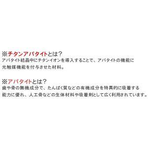 カーペット 6畳 カーペット ラグ ホットカーペット対応 おしゃれ 防臭 シンプル 無地 ペットOK フレヤ|nakane|05