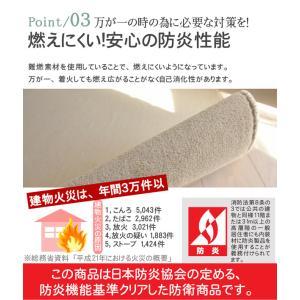 カーペット 6畳 カーペット ラグ ホットカーペット対応 おしゃれ 防臭 シンプル 無地 ペットOK フレヤ|nakane|06