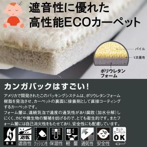 カーペット 防音カーペット 六畳 6畳 江戸間 絨毯 エディcarpet nakane 02