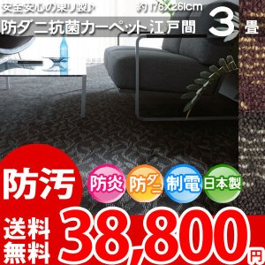 防汚カーペット 三畳 3畳 カーペット ラグ 江戸間 3帖(176×261) 絨毯 東リ レアルタ|nakane