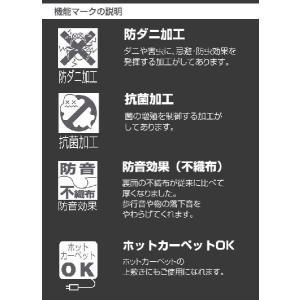 カーペット デザインカーペット 6畳 カーペットラグ モダン 日本製 MODERN DEAP|nakane|03