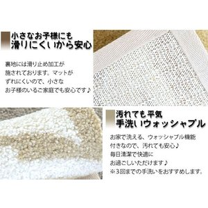玄関マット 洗える 手洗い ウォッシャブル モダン おしゃれ 60×90cm ゴージャズ|nakane|03