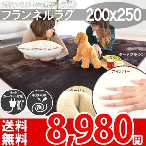 ラグ おしゃれ 安い モダン 3畳 カーペット シンプル ふわふわ 厚地 リビング 200×250 フライズ|nakane