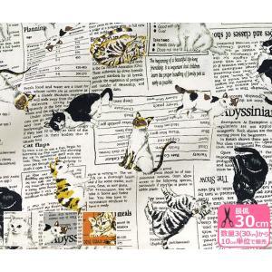 猫とニュースペーパー シーチング ネコと新聞のような英語柄 生地 布 850250-2|nakanotetsu