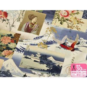和風 波と富士山 B&B FABRICS 広幅 約140cm巾 インクジェットプリント USAコットン 生地 布 91299-13|nakanotetsu