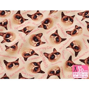 USAコットン グランピーキャットGrumpy Cat 9722 あの不機嫌そうな表情で有名なニャンコ柄 布 生地 B&B FABRICS|nakanotetsu