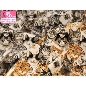 ニャンニャンファブリック 猫の総柄 ネコだらけ オックスプリント 中厚 綿100% 110cm巾 生地 布 ネコ ねこ 猫柄|nakanotetsu