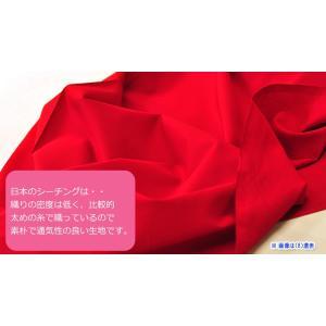エコテックス認証 シーチング無地 ECO6600 ICHINOKIREイチノキレ 綿100% 110cm巾 日本製 小さなお子様のスモックやお弁当袋などの手づくりに!|nakanotetsu|03