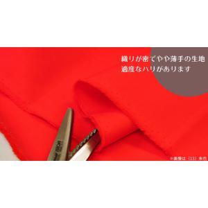 KTF-01 カラーブロード無地 赤 紫 ピンク系 綿100% やや薄手 110cm巾 日本製 生地 布(27/48/8/61/73/20/69/62/46/49/13/3/10/67/39/23)|nakanotetsu|04