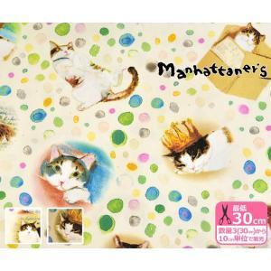Manhattaner's 水玉模様のフェデリコ オックス マンハッタナーズ 生地 布 MA13102S nakanotetsu