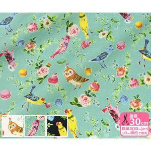 sobakasu-kids. Happy time シーティング お花やアクセサリーで着飾った小鳥やフクロウ 有輪商店 生地 布 SK115555|nakanotetsu
