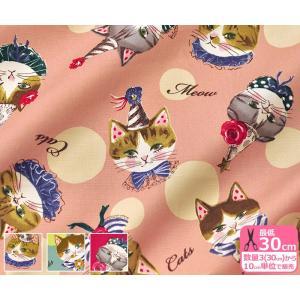 sobakasu-kids. Cat's face オックス 猫の顔と水玉ドットの大きめ柄 有輪商店 生地 布 SK155197|nakanotetsu