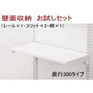 (お試しお買い得) 壁面システム収納 W450×H700|nakasa2